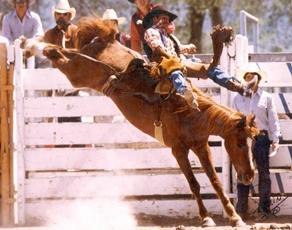 College Rodeo 1984