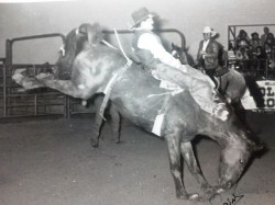 College Rodeo 84